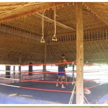 freestyle-muay-thai-in-tampa-hillcamp-ring